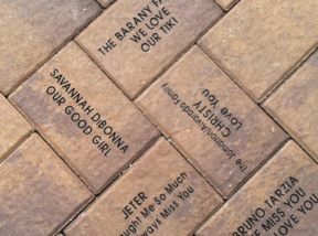 Eternity Bricks